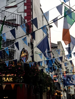 Ireland   Dublin, Kilkenny, and Irish Guinness Beef Stew