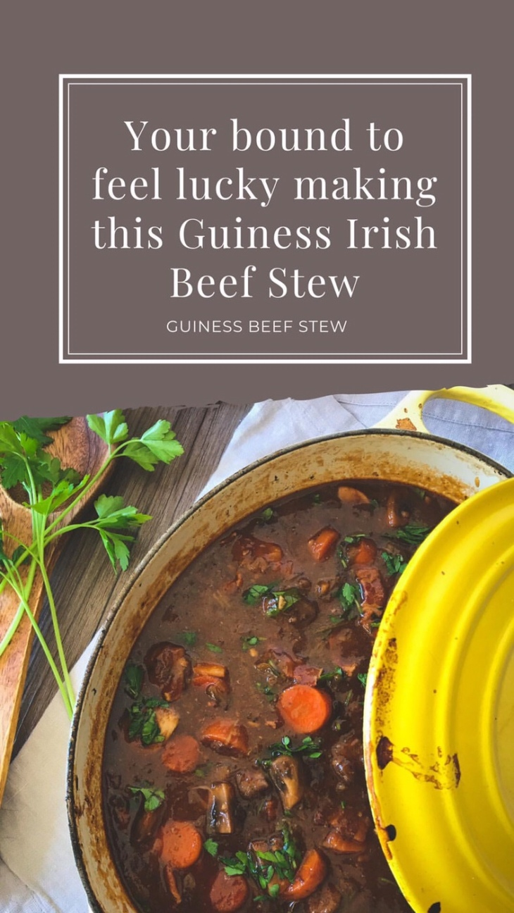 Ireland | Dublin, Kilkenny, and Irish Guinness Beef Stew